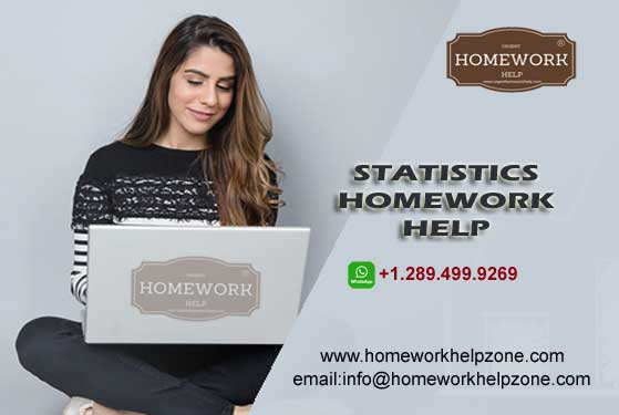 statistics homework help online